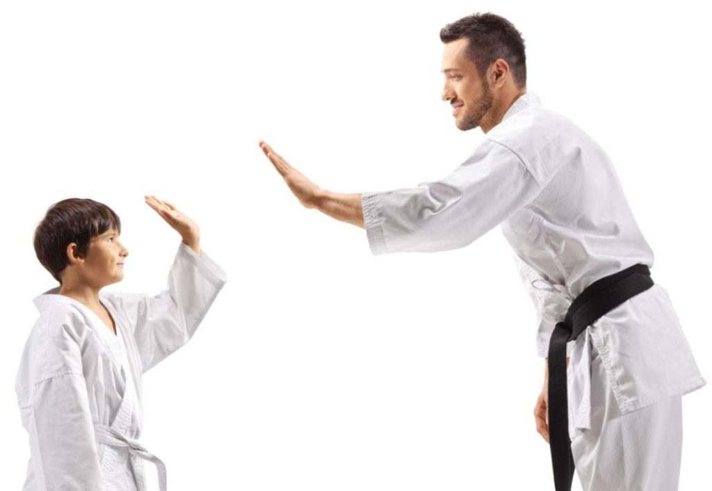 Our School Background 1 1024x706, AmeriKick Martial Arts Levittown PA